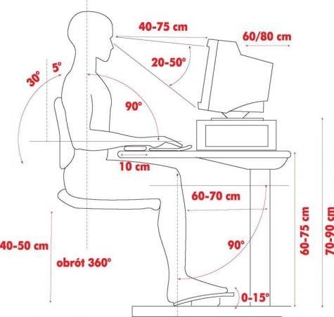 Znaczenie prawidłowej postawy ciała podczas pracy zawodowej i w czynnościach dnia codziennego